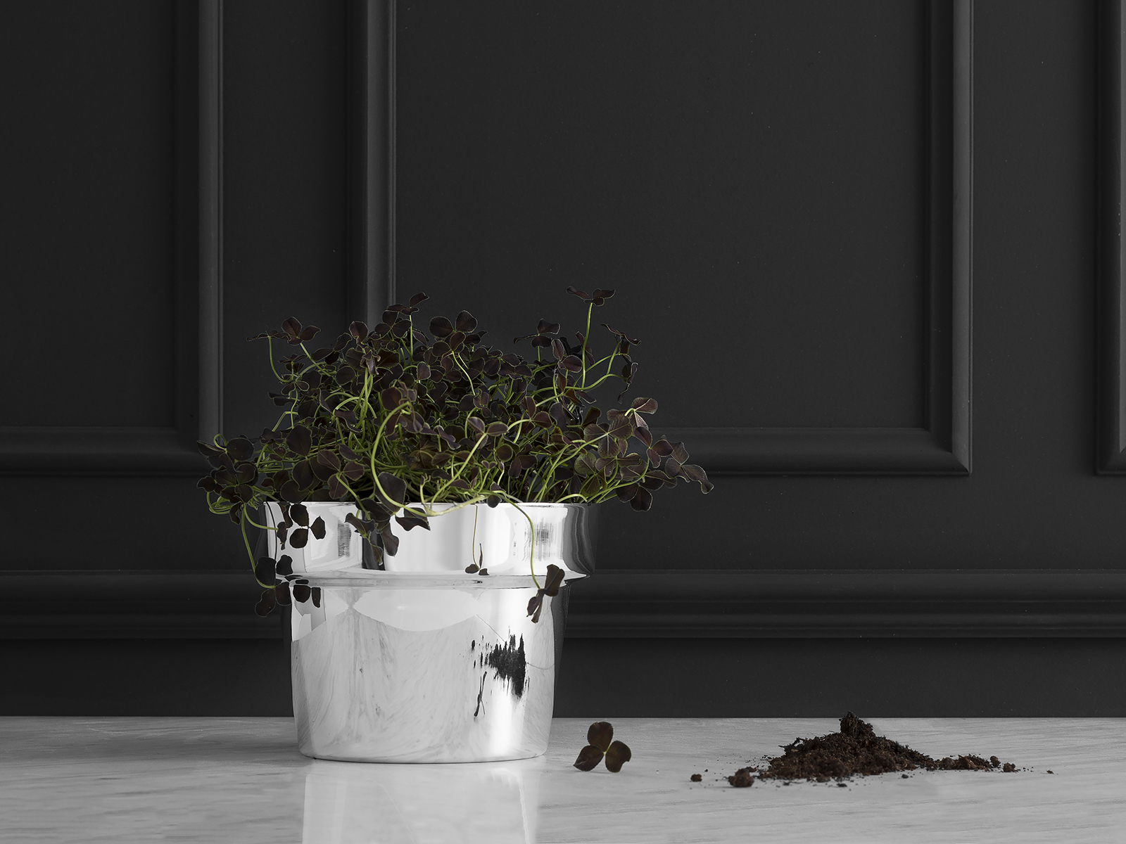 Flower Pot for Skultuna - New silver finish